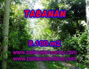 TANAH DIJUAL DI BALI, MURAH DI TABANAN RP 270.000 / M2 – TJTB113