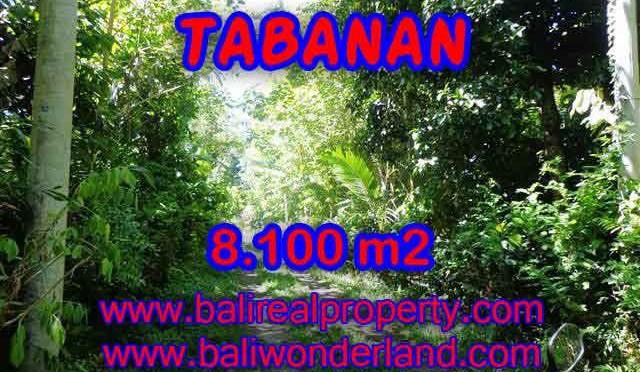 TANAH DIJUAL DI BALI, MURAH DI TABANAN RP 270.000 / M2 - TJTB113