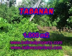 TANAH DIJUAL DI BALI, MURAH DI TABANAN RP 4.250.000 / M2 – TJTB114