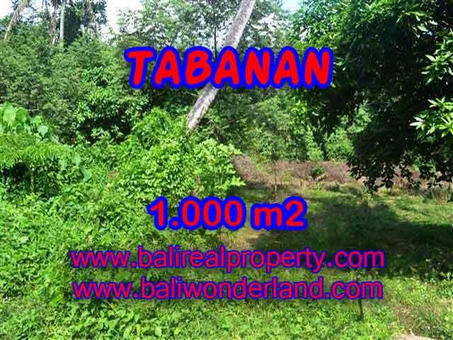 TANAH DIJUAL DI BALI, MURAH DI TABANAN RP 4.250.000 / M2 - TJTB114