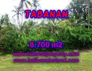 INVESTASI PROPERTI DI BALI – TANAH DIJUAL DI TABANAN BALI MURAH TJTB115