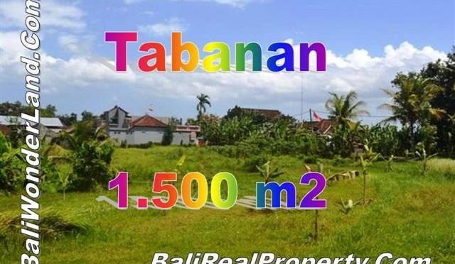 TJTB144 - 1 - DIJUAL TANAH DI TABANAN - LAND FOR SALE IN TABANAN BALI 1