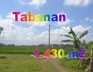 Jual Tanah Murah di Tabanan TJTB145
