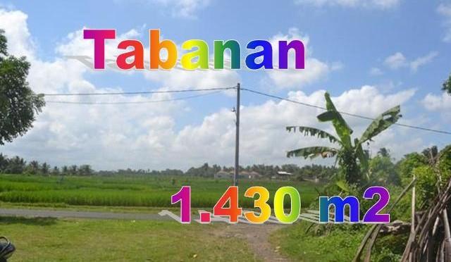 TJTB145 - 1 - TANAH DI TABANAN DIJUAL MURAH - LAND FOR SALE IN TABANAN BALI 01
