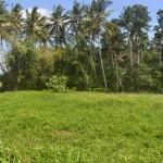 TJTB145 - TANAH DI TABANAN DIJUAL MURAH - LAND FOR SALE IN TABANAN BALI 01