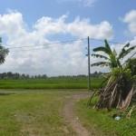 TJTB145 - TANAH DI TABANAN DIJUAL MURAH - LAND FOR SALE IN TABANAN BALI 04
