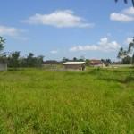 TJTB145 - TANAH DI TABANAN DIJUAL MURAH - LAND FOR SALE IN TABANAN BALI 08