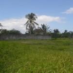 TJTB145 - TANAH DI TABANAN DIJUAL MURAH - LAND FOR SALE IN TABANAN BALI 09