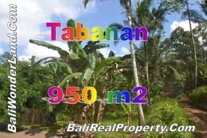 Tanah dijual di Tabanan, peluang investasi property di Bali TJTB146