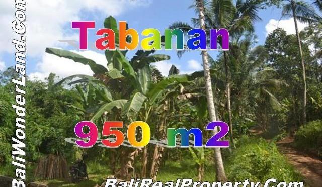TJTB146 - 1 - TANAH DI TABANAN DIJUAL MURAH - LAND FOR SALE IN TABANAN BALI 1
