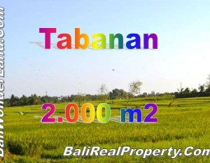 Jual tanah di Tabanan Bali View Cantik Harga Asyik TJTB147