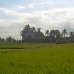 TJTB147 - TANAH DI TABANAN DIJUAL MURAH - LAND FOR SALE IN TABANAN BALI 04