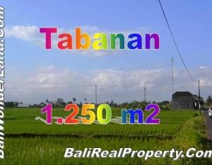 Jual Tanah Murah di Tabanan TJTB148 by Bali Real Property