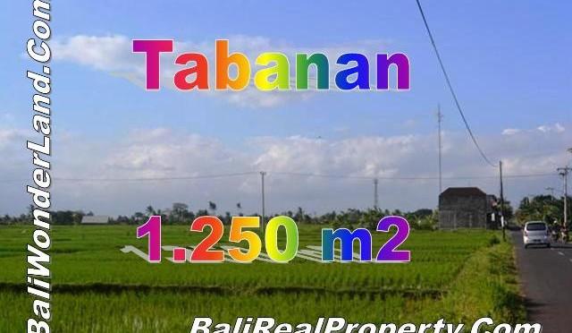 TJTB148 - 1 - TANAH DI TABANAN DIJUAL MURAH - LAND FOR SALE IN TABANAN BALI 01