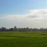 TJTB148 - TANAH DI TABANAN DIJUAL MURAH - LAND FOR SALE IN TABANAN BALI 01