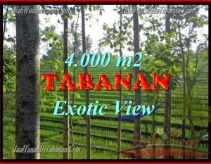 DIJUAL TANAH DI BALI, MURAH DI TABANAN RP 400.000 / M2 – TJTB150