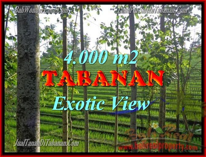 DIJUAL TANAH DI BALI, MURAH DI TABANAN RP 400.000 / M2 - TJTB150
