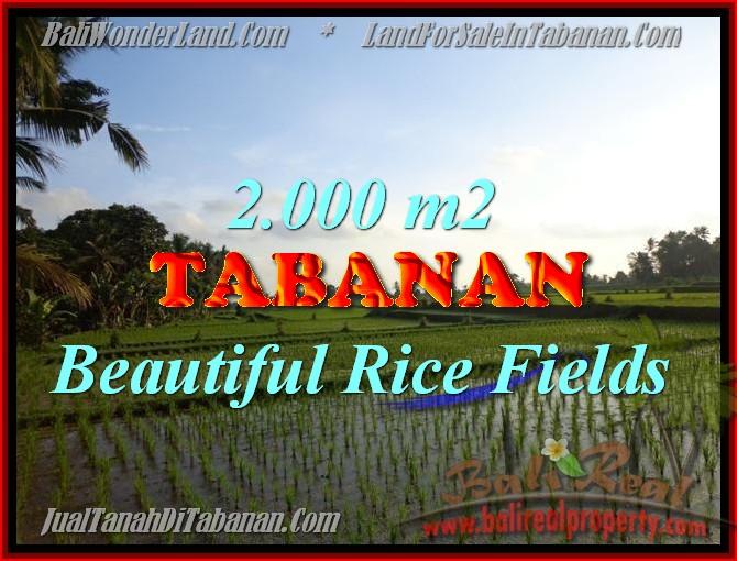 TANAH DI TABANAN BALI DIJUAL TJTB151 - PELUANG INVESTASI PROPERTY DI BALI