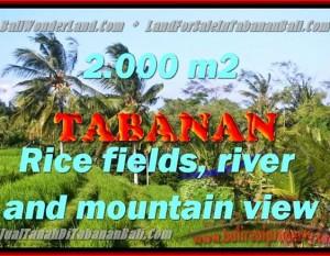 DIJUAL TANAH DI TABANAN RP 2.250.000 / M2 – TJTB147 – INVESTASI PROPERTY DI BALI