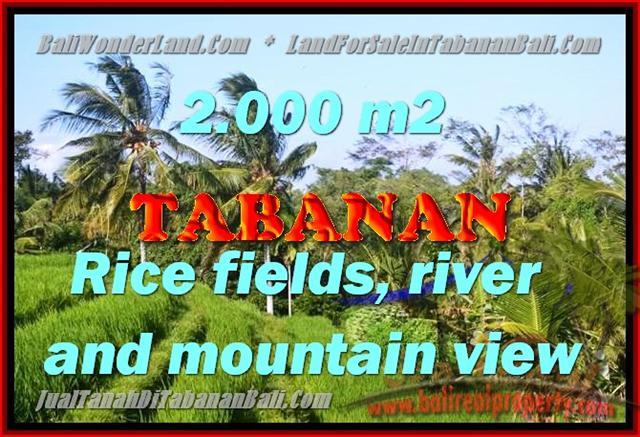DIJUAL TANAH DI TABANAN RP 2.250.000 / M2 - TJTB147 - INVESTASI PROPERTY DI BALI