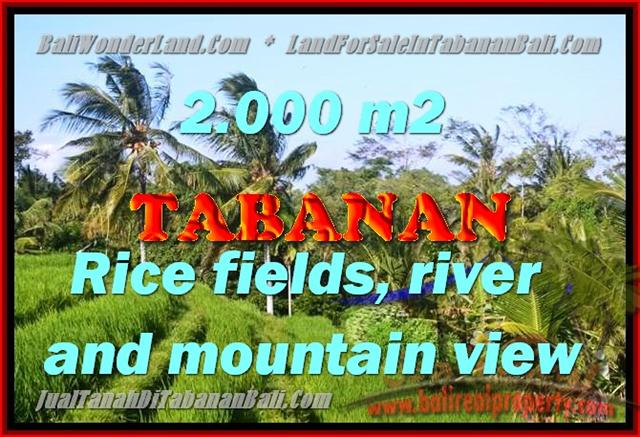 TANAH DIJUAL DI TABANAN BALI TJTB147