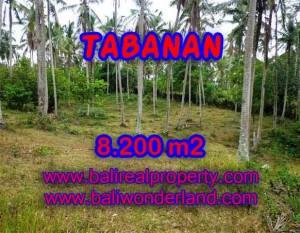 TANAH DI BALI DIJUAL, MURAH DI TABANAN TJTB142 – INVESTASI PROPERTY DI BALI