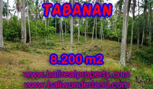 TANAH DI BALI DIJUAL, MURAH DI TABANAN TJTB142 - INVESTASI PROPERTY DI BALI