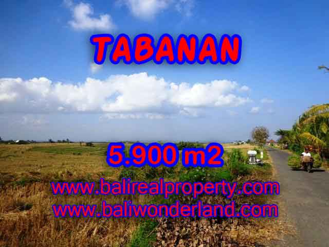 MURAH ! DIJUAL TANAH DI TABANAN TJTB131