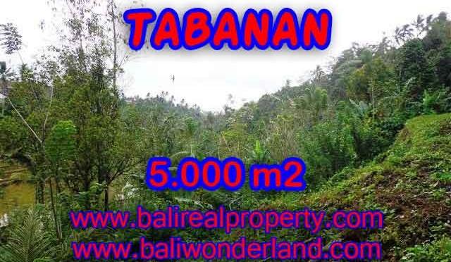 TANAH DIJUAL DI TABANAN MURAH TJTB139 - PELUANG INVESTASI PROPERTY DI BALI