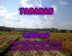 Murah ! Tanah di TABANAN Bali Dijual Rp 450.000 / m2 – TJTB132