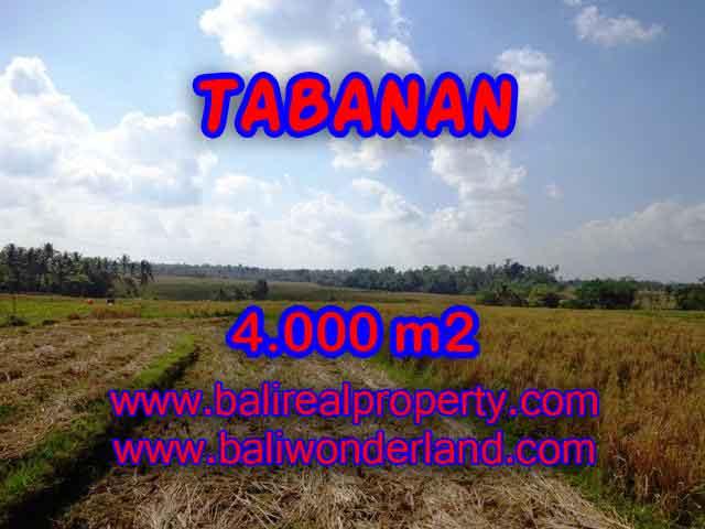 Murah ! Tanah di TABANAN Bali Dijual Rp 450.000 / m2 - TJTB132