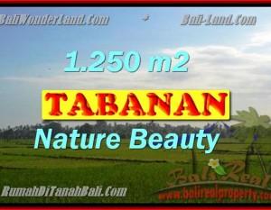 TANAH DIJUAL DI BALI, MURAH DI TABANAN RP 3.350.000 / M2 – TJTB148 – INVESTASI PROPERTY DI BALI