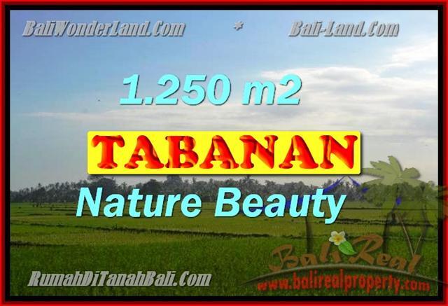 TANAH DIJUAL DI BALI, MURAH DI TABANAN RP 3.350.000 / M2 - TJTB148 - INVESTASI PROPERTY DI BALI
