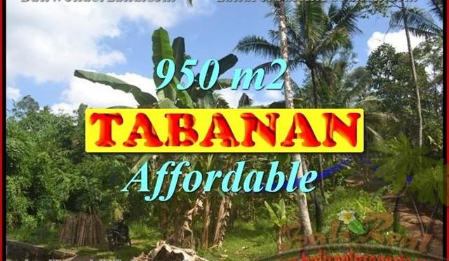 TANAH MURAH DI TABANAN BALI TJTB146 - INVESTASI PROPERTY DI BALI