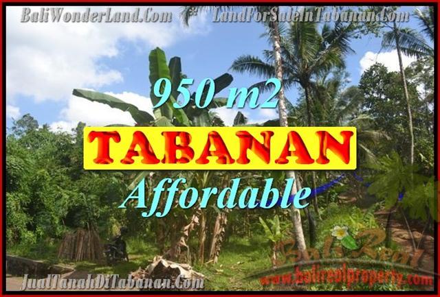 DIJUAL TANAH DI TABANAN BALI TJTB146 - PELUANG INVESTASI PROPERTY DI BALI