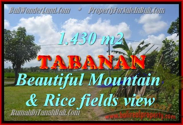 TANAH DIJUAL DI TABANAN MURAH TJTB145 - PELUANG INVESTASI PROPERTY DI BALI