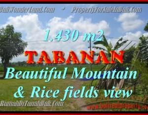 TANAH DI TABANAN BALI DIJUAL TJTB145 – PELUANG INVESTASI PROPERTY DI BALI