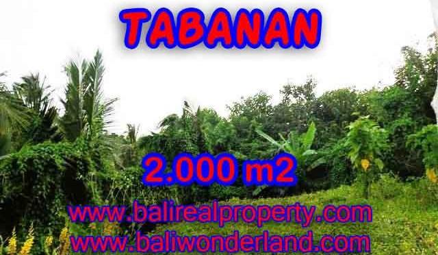 DIJUAL TANAH MURAH DI TABANAN TJTB099 - PELUANG INVESTASI PROPERTY DI BALI