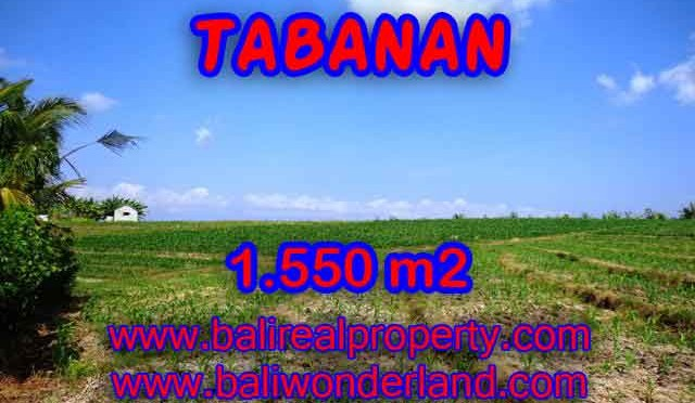 DIJUAL TANAH DI TABANAN MURAH TJTB134 - INVESTASI PROPERTY DI BALI