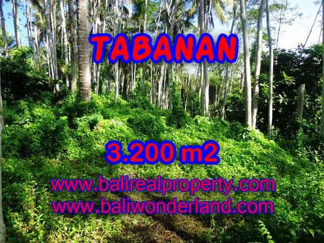 DI JUAL TANAH DI TABANAN BALI TJTB120 - PELUANG INVESTASI PROPERTY DI BALI