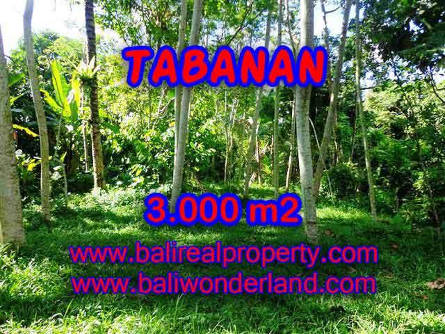 DIJUAL TANAH MURAH DI TABANAN BALI TJTB109