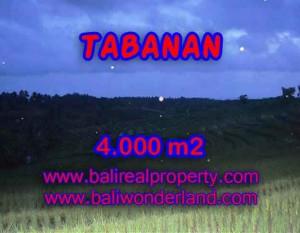 INVESTASI PROPERTI DI BALI – JUAL TANAH DI TABANAN BALI TJTB096
