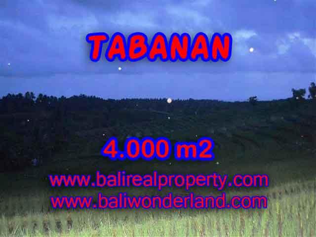 INVESTASI PROPERTI DI BALI - JUAL TANAH DI TABANAN BALI TJTB096