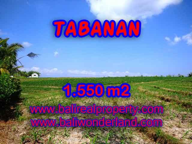 TANAH DIJUAL DI TABANAN RP 500.000 / M2 - TJTB134