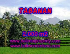 JUAL TANAH DI TABANAN BALI MURAH RP 500.000 / M2 – TJTB121