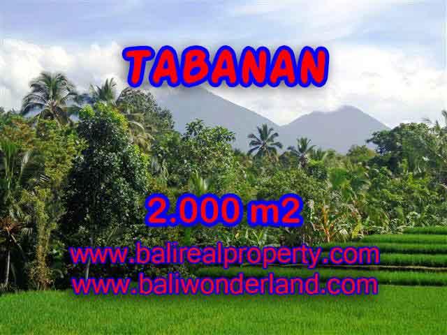 JUAL TANAH DI TABANAN BALI MURAH RP 500.000 / M2 - TJTB121