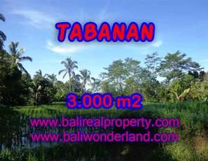 DIJUAL MURAH TANAH DI TABANAN BALI TJTB110 – PELUANG INVESTASI PROPERTY DI BALI