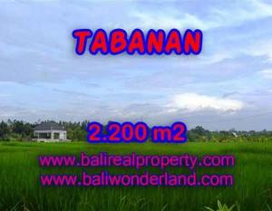 INVESTASI PROPERTI DI BALI – TANAH DIJUAL DI TABANAN BALI TJTB097