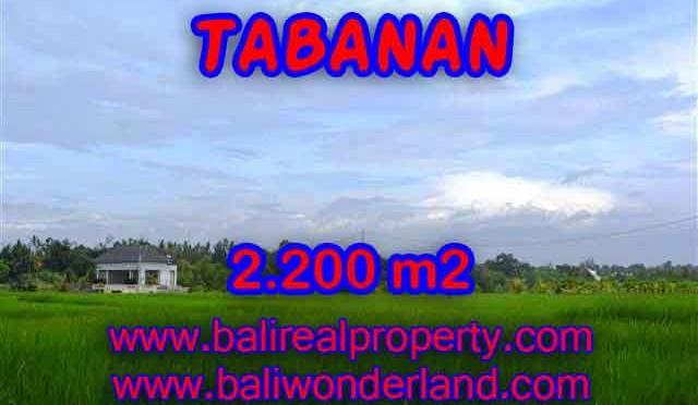 INVESTASI PROPERTI DI BALI - TANAH DIJUAL DI TABANAN BALI TJTB097