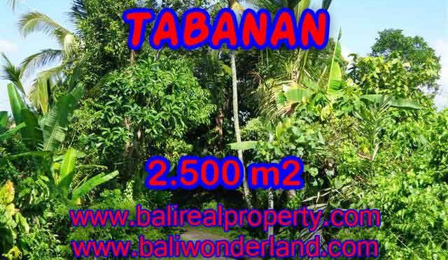 TANAH DI BALI, MURAH DI TABANAN DIJUAL TJTB122 - INVESTASI PROPERTY DI BALI